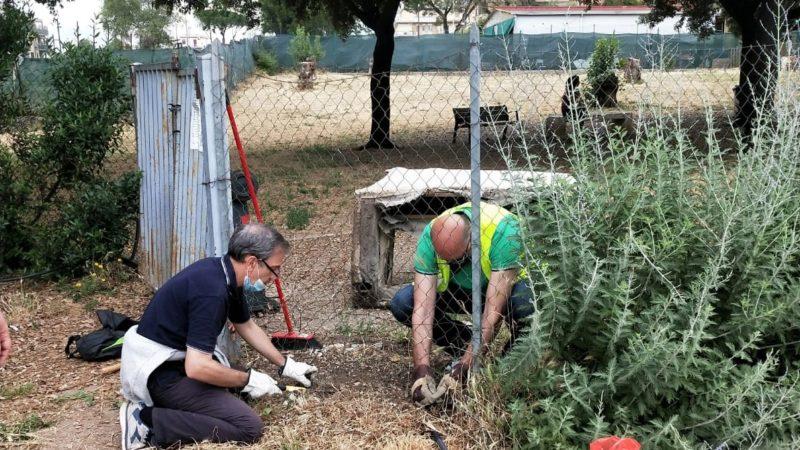 INCONTRO AL PARCO: sistemazione del verde, ripristino e messa in sicurezza del secondo cancello dell'area cani.